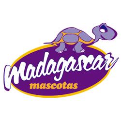 madagascar mascotas web seo1 1 - Madagascar Mascotas