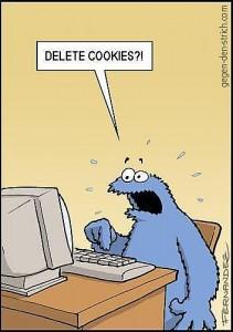 adaptación política cookies