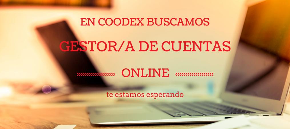 coodex buscamos gestor de cuentas online - Buscamos gestor/a de cuentas de marketing online