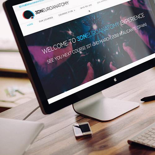 diseno web 3dneuroanatomy servicios medicos 01 500 - Diseño de páginas web Alicante: 3D Neuroanatomy