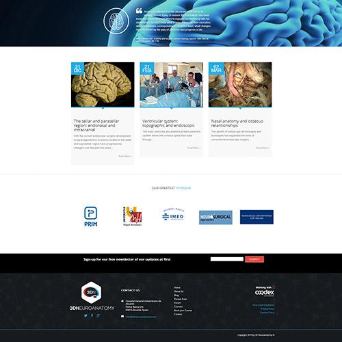 diseno web 3dneuroanatomy servicios medicos 08 500 - Diseño de páginas web Alicante: 3D Neuroanatomy