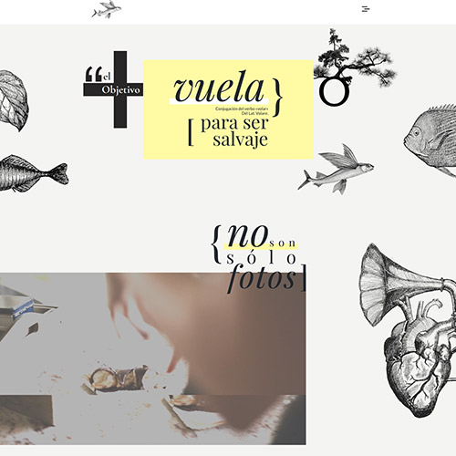 javier berenguer captura2 prev - Diseño web: Javier Berenguer