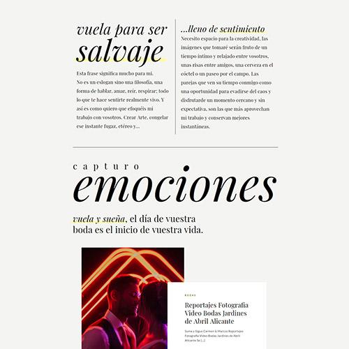 javier berenguer captura3 prev - Diseño web: Javier Berenguer